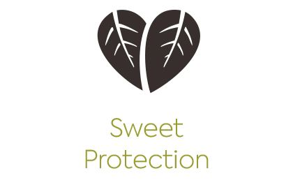 sweet-protection